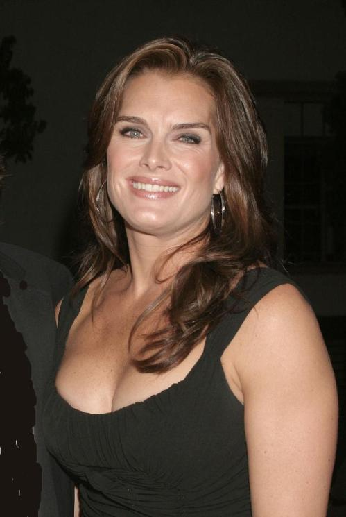 Lipstick Jungle's Brooke Shields